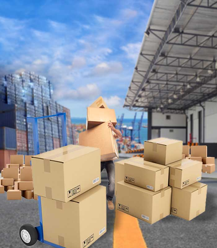 packers and movers in Sidhi